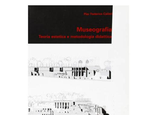 Museografia. Teoria estetica e metodologia didattica
